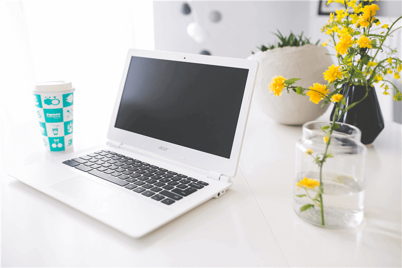Living For Now/ Online Business Colorado
